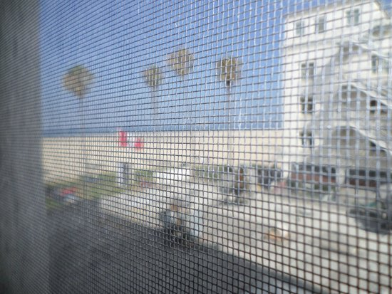 Venice Beach Suites & Hotel: (obscured by fly net) view from Partial view studio