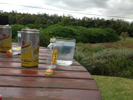 Rothman Manor: Gin & Tonic