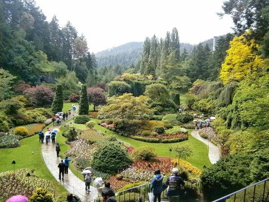 The Butchart Gardens: Sunken Garden