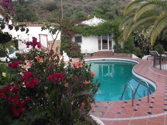 Jardines De La Reina Boutique Bed & Breakfast: Pool