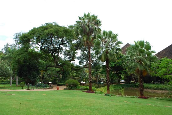 Safari Park Hotel: Территория отеля