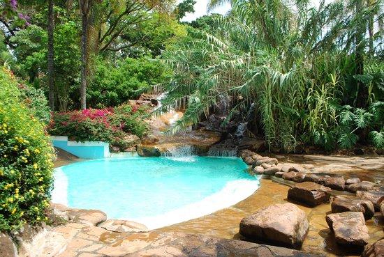 Safari Park Hotel: Бассейн