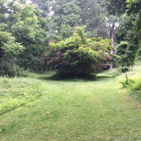 Springside Landscape