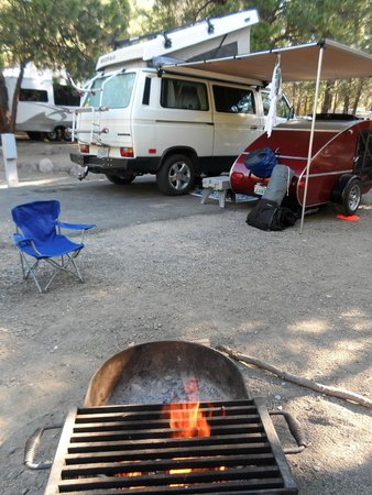 Collier Memorial State Park: Our campsite.