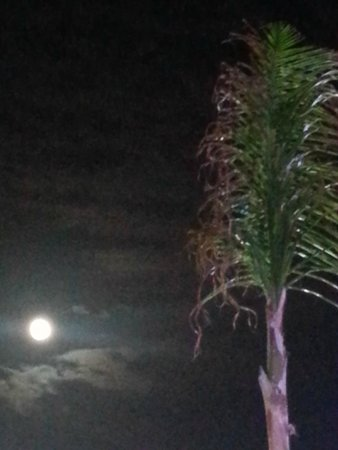 Royalton White Sands Resort : Friday the 13th full moon