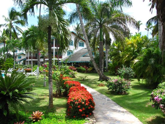 Hotel Residence Playa Colibri: tropical bliss