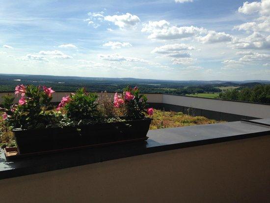 Landhotel Birkenhof: Aussicht vom Balkon