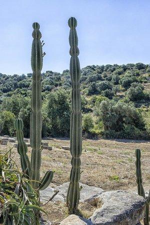 Relais Parco Cavalonga: The Iblea country