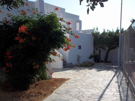 Knossos Beach Bungalows & Suites : Hotel grounds