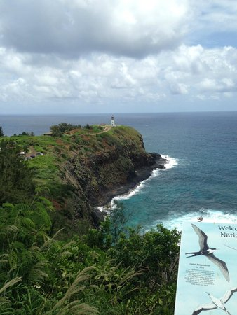 Kilauea Point National Wildlife Refuge: View from the top lookout