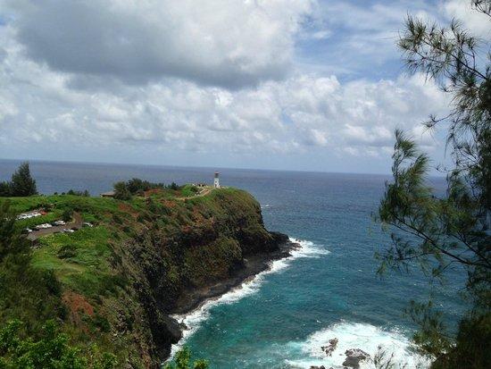 Kilauea Point National Wildlife Refuge: panoramic views
