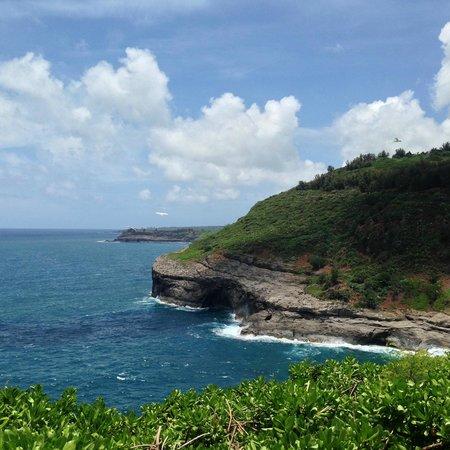 Kilauea Point National Wildlife Refuge: the north coast