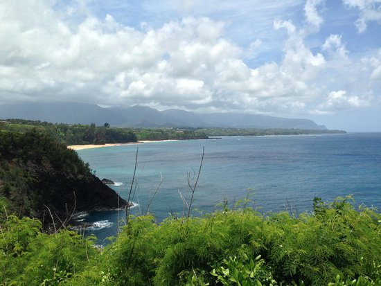 Kilauea Point National Wildlife Refuge : view from by the gift shop