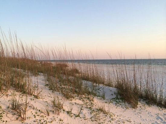 St. Joseph Peninsula State Park: Beach at campgrounds