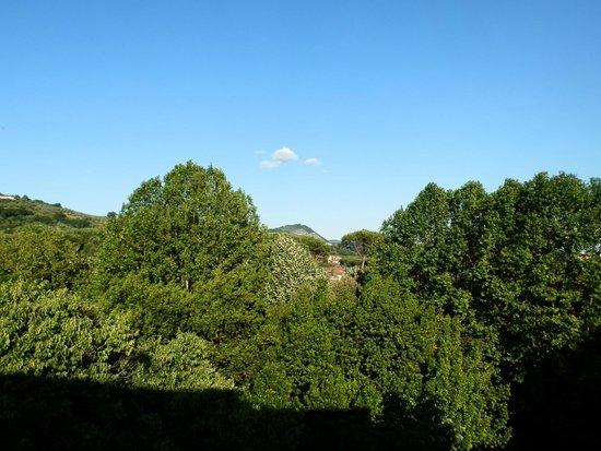 Hotel Cappelli: Вид с балкона