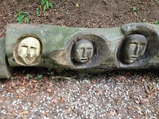 Mother Shipton's Cave and The Petrifying Well : carvings