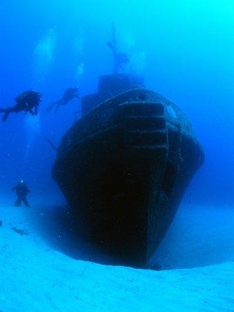 Starfish Diving : Wreck