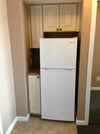 Pier 7 Condominiums: All units have a large refrigerator