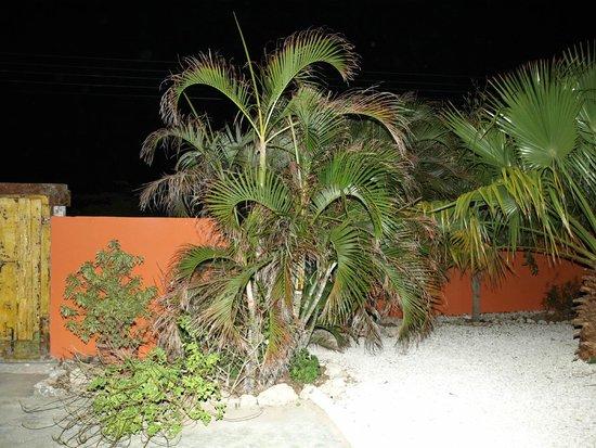 Villa Punta Salina: Punta Salina