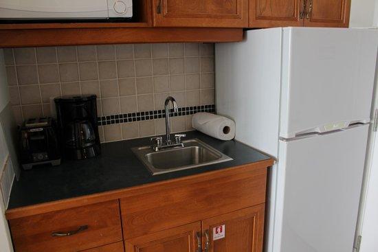 Royal West Indies Resort : sink and fridge