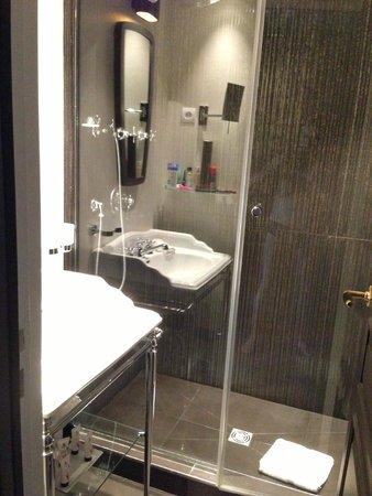 Hotel les Dames du Pantheon: Room #50 bathroom
