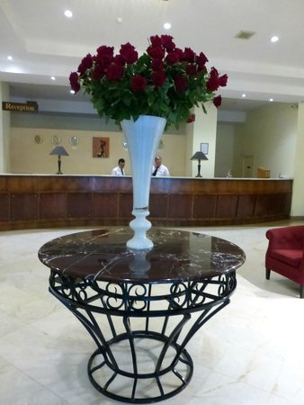 Ani Plaza Hotel: La hall
