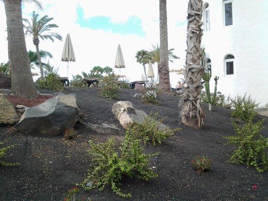 H10 Timanfaya Palace: garden