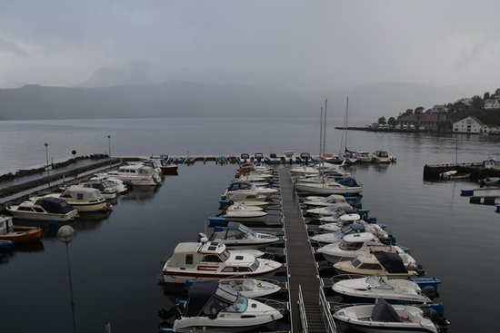 Ryfylke Fjordhotel: Zicht op jachthaven en Fjord