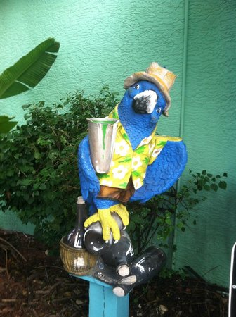 Parrot Key Caribbean Grill: Hostess :)