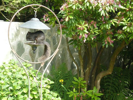 The Stone Hedge Bed and Breakfast: Cute 'ey?!