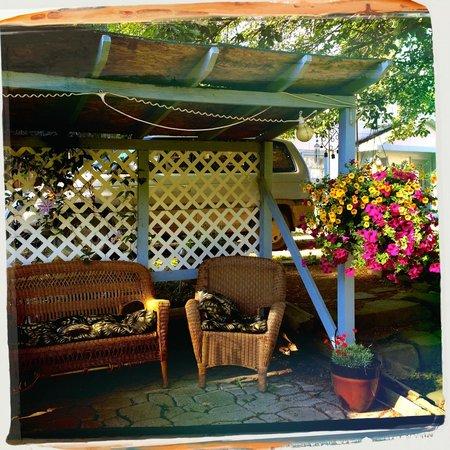 Oregon Hotel : Back garden