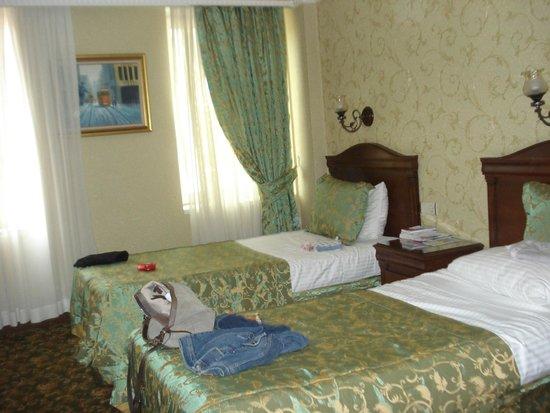 Assos Hotel Istanbul: scorcio della camera