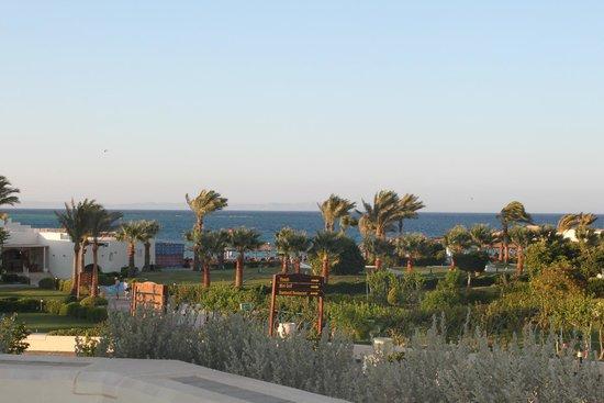 Hilton Hurghada Plaza : Вид из номера Graund floor