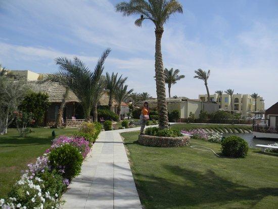 Panorama Bungalows Resort El Gouna: Дорожка перед бунгало.