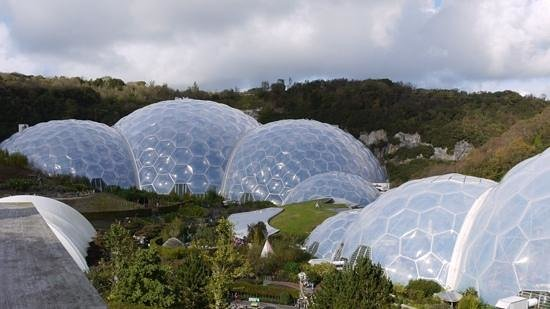 Eden Project : The domes