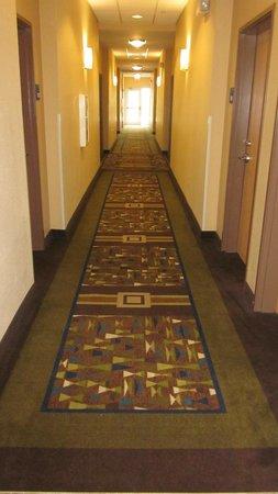 Holiday Inn Express Lake Wales N - Winter Haven: Hall