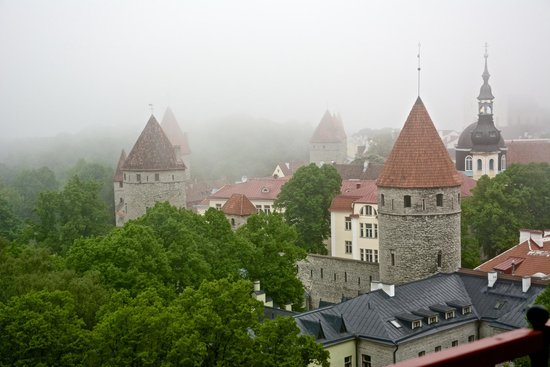 EstAdventures: A rainy day in Tallinn overlooking buildings in the Old Town.