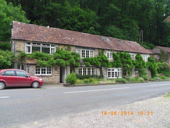 The Bark House