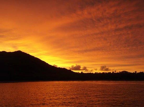 Malolosurf co: totoya sunrise