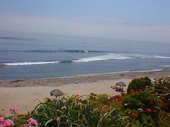Exclusive Private Surfing Beach Picture Of Las Gaviotas Rosarito Tripadvisor