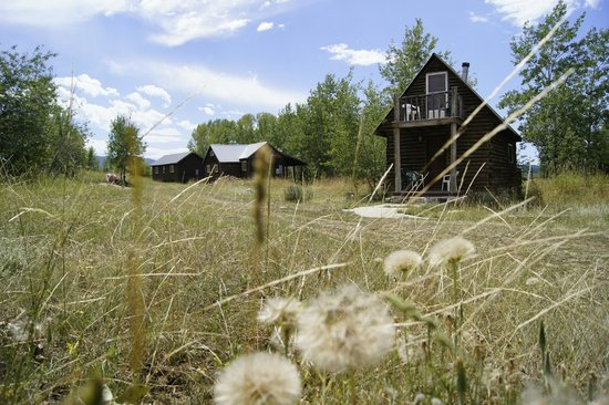 Bedford, Вайоминг: Each cabin has a patio, and the homesteader has a balcony as well