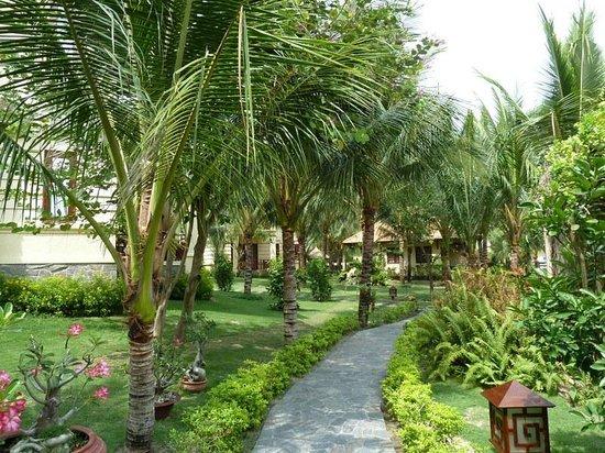 Sunny Beach Resort: территория