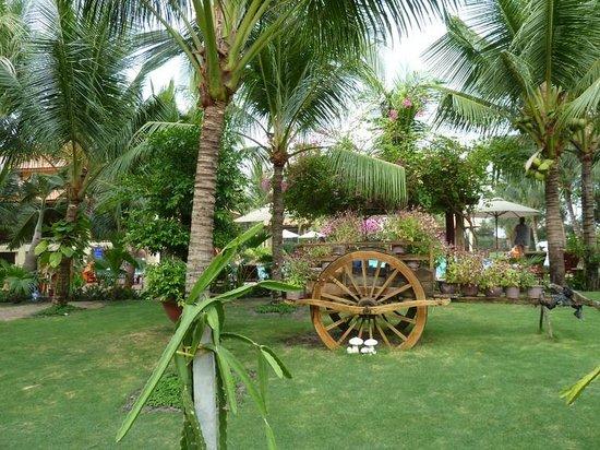 Sunny Beach Resort : территория