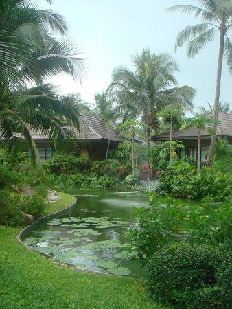 Bo Phut Resort & Spa : территория отеля