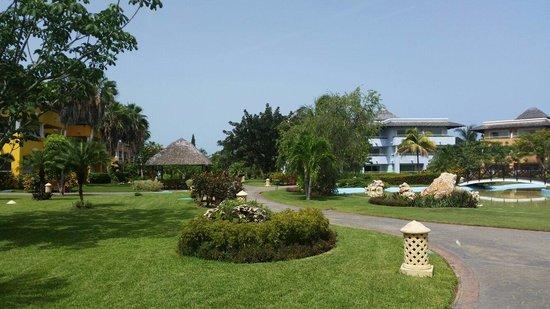 Iberostar Varadero : Garden view