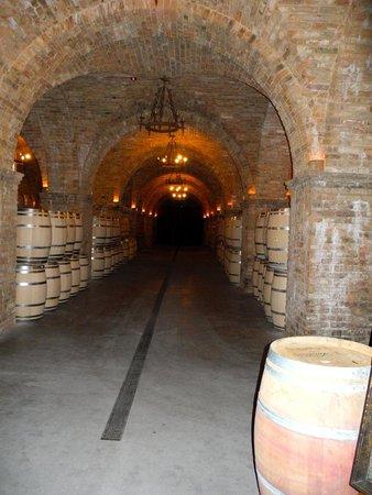 Castello di Amorosa: Interior wine barrels