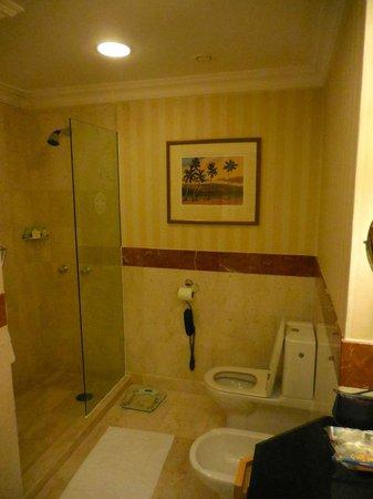 Grand Hyatt Muscat : Shower