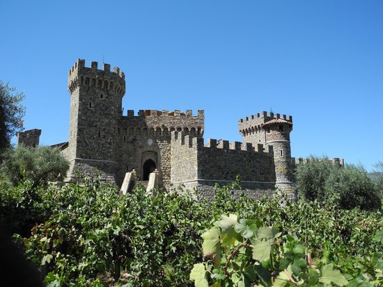 Castello di Amorosa: Surrounded by vineyard