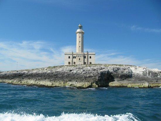 Motobarca Desiree Grotte Marine di Vieste : Vieste Lighthouse