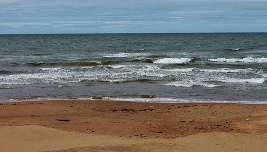 North Rustico Beach: Nice wave action on a windy day
